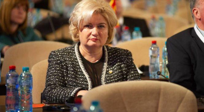 Siminica Mirea, la conferinţa interparlamentară privind viitorul Uniunii Europene